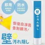 日本防水牆壁修補膏/補牆膏 套裝 250g 送專用刮板
