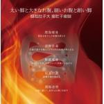 Surimu 燃脂燒腩茶包