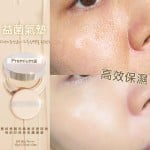 韓國益菌氣墊/換皮氣墊 SPF 50+ (15GX2)