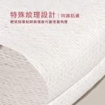 SO JOLI 日本最新木奶伊化妝棉 (1盒60片)